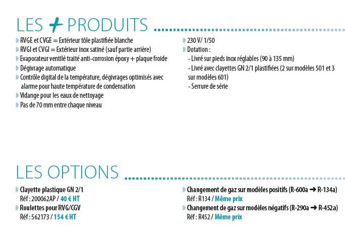 armoire-gn-2-1-froid ventilé-description